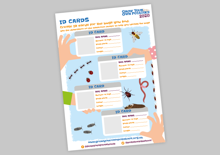 Create your own Bug ID cards